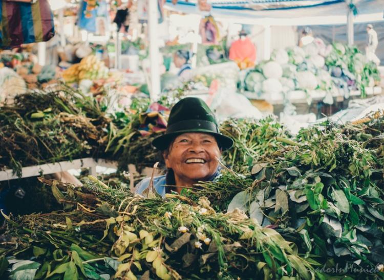 fruit-and-vegetebale-market-in-ecuador-3