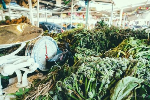fruit-and-vegetebale-market-in-ecuador-6