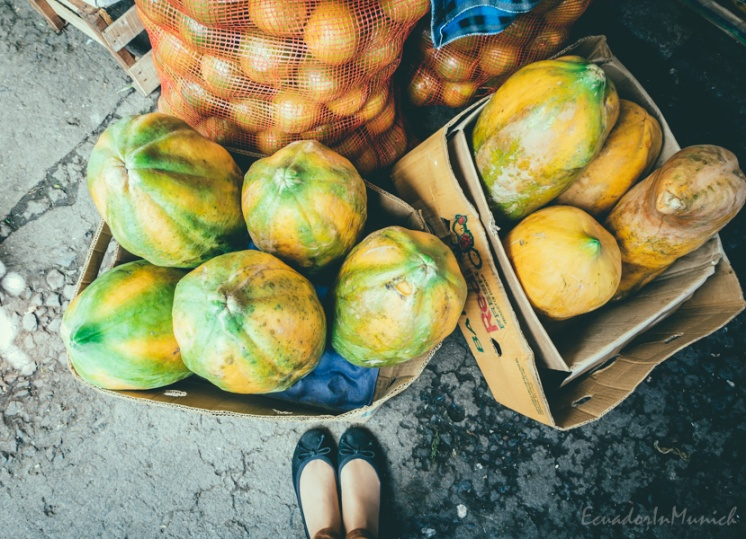 fruit-and-vegetebale-market-in-ecuador-7