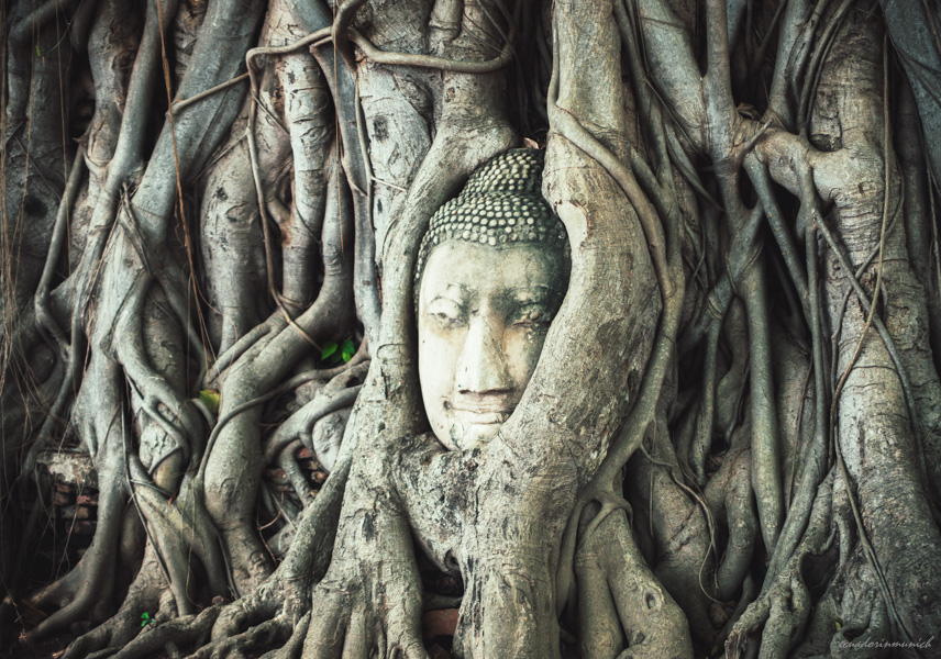 Buddha, Ayutthaya, Thailand
