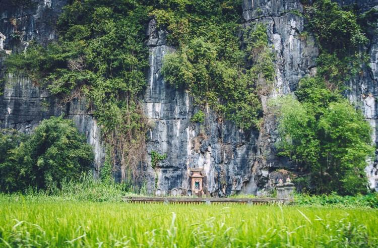 Vietnam (19)